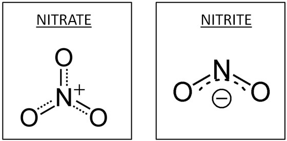 molecular-structure-of-nitrates-and-nitrites